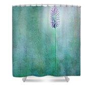 Chandelle Shower Curtain