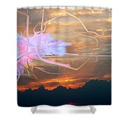 Change Of Heart  Shower Curtain