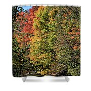 Changing Colours Of The Fall Shower Curtain