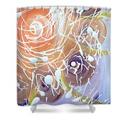 Changing Energy  Section Shower Curtain
