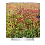 Changing Landscape II Shower Curtain