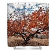 Changing Of Seasons Shower Curtain