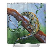 Channel Islands Night Lizard Shower Curtain