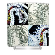 Chaos Dragon Fact W Fiction Shower Curtain