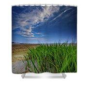 Chapin Beach Shower Curtain