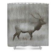 Charcoal Bull Elk In Field Shower Curtain