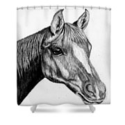 Charcoal Horse Shower Curtain