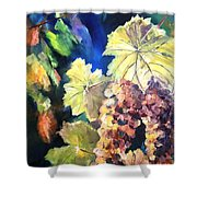 Chardonnay Vines Shower Curtain