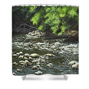 Charles On The Rocks Shower Curtain