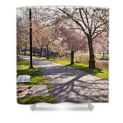 Charles River Cherry Trees Shower Curtain