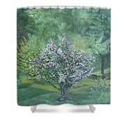 Charles Street Shower Curtain