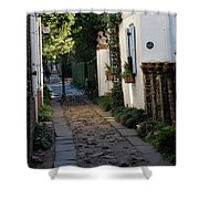 Charleston Alley 1 Shower Curtain
