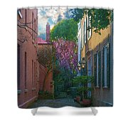 Charleston Alley In The Spring Shower Curtain