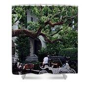 Charleston Buggy Ride Shower Curtain by Skip Willits