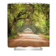 Charleston Sc Edisto Island Dirt Road - The Deep South Shower Curtain