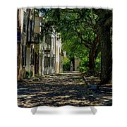 Charleston Side Street Shower Curtain