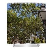 Charleston Through The Tree's Shower Curtain