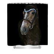 Charlotte-phil-7 Shower Curtain