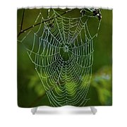 Charlotte's Web Shower Curtain