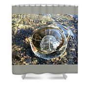 Cirron With Trees Shower Curtain