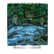 Charming Creek Walkway 1 Shower Curtain