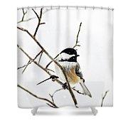 Charming Winter Chickadee Shower Curtain