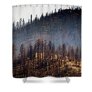 Charred Shower Curtain