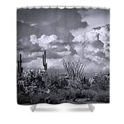 Chasing Clouds Again In Black And White  Shower Curtain