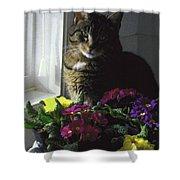 Chat Et Fleurs Shower Curtain