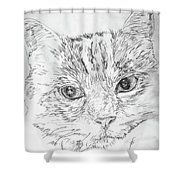 Chat Somnolant Resting Cat Shower Curtain