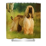 Chatai Shower Curtain