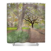 Chatham Square  Shower Curtain