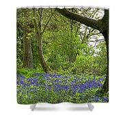 Chawton House Library,hampshire Shower Curtain