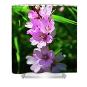 Checkerbloom Shower Curtain