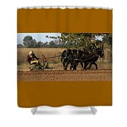 Checking The Row Full Color 5421 H_2 Shower Curtain