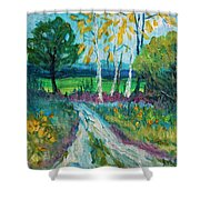 Cheerful Path Shower Curtain