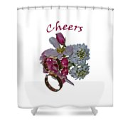 Cheers  A Greeting Card Shower Curtain