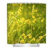 Cheery Buttercups Shower Curtain