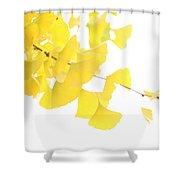 Cheery Ginkgo  Shower Curtain