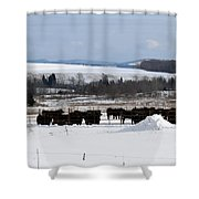 Cheese Makers With A View Shower Curtain