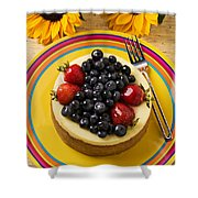 Cheesecake With Fruit Shower Curtain