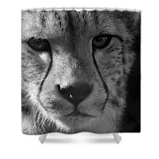 Cheetah Black And White Shower Curtain