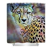 Cheetah Viii Shower Curtain