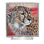Blaa Kattproduksjoner       Cheetahs Face Shower Curtain