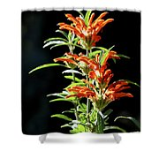 Cheeto Plant Portrait Shower Curtain