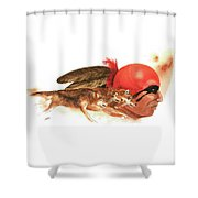 Cherokee Wolves Shower Curtain