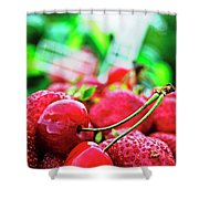 Cherries And Berries Shower Curtain
