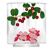 Cherries And Cherry Blossoms Shower Curtain