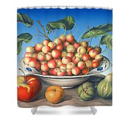 Cherries In Delft Bowl With Red And Yellow Apple Shower Curtain