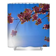 Cherries In The Sky Shower Curtain